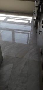 חידוש רצפה